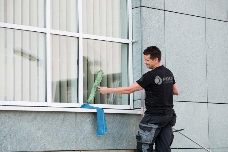 Fensterreinigung mit Reingungsgerät